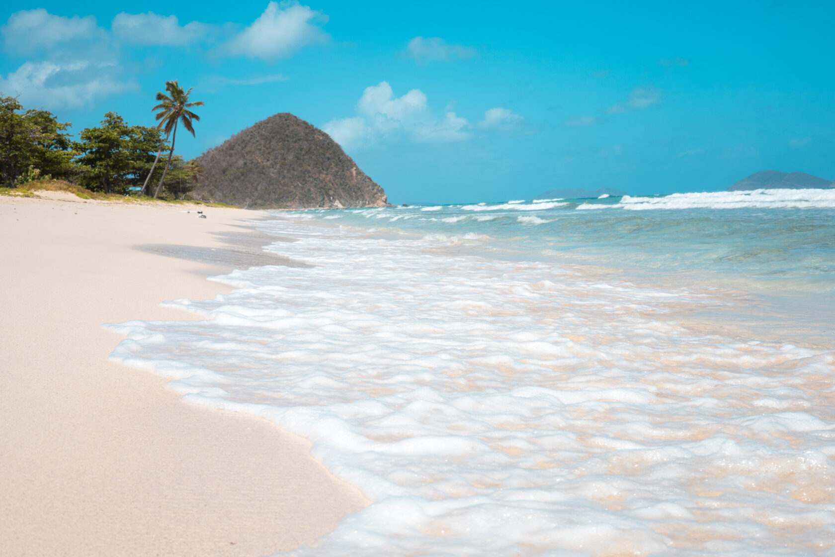 A beach with waves and palm trees