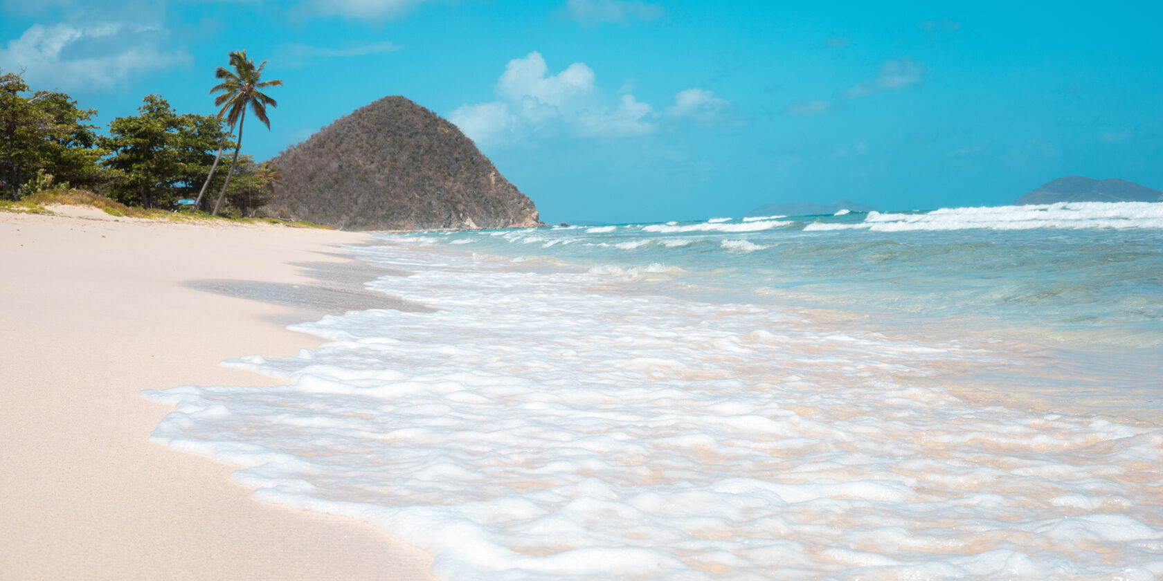 A beach on the island of Tortola with waves and palm trees